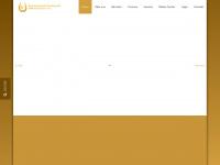 kvp-mittelsachsen.de Webseite Vorschau