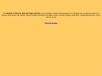 heliconiaparadise.com