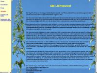 Lichtwurzel.de