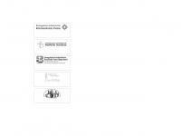 kirche-peine.de