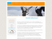 lockervomhocker-reiten.de Webseite Vorschau
