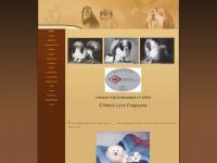 loewchen-fragopole.de Webseite Vorschau