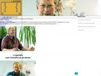 logo-lackner.de Webseite Vorschau