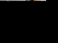 lotharebert.de Webseite Vorschau