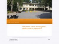 waldbachschule.de