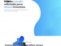 petras-heimtierbedarf.com