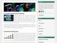 disco-pw.de