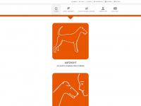 mobiles-hundetraining.ch