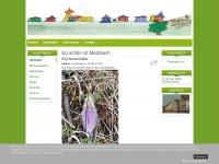 Molzbach.de