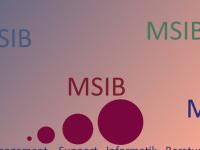 msib.ch