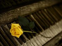 musikunterricht-voss.de