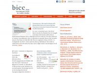 bicc.de Webseite Vorschau