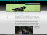 forever-sunshine.ch