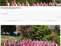 musikzug-meine.de