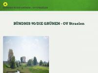 b90-gruene-straelen.de Webseite Vorschau