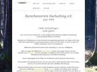 bv-harlaching.de