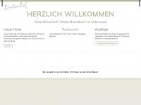 hotel-birkenhof-waldmichelbach.de