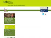 sef-bonn.org Webseite Vorschau