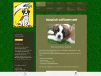 bernhardiner-in-not.de
