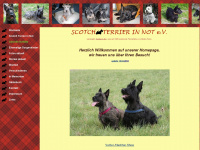 scotch-terrier-in-not.de