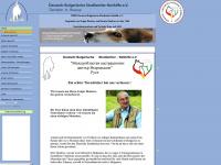 db-tierhilfe.de