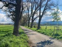 nqv-hirzbrunnen.ch Webseite Vorschau