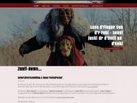 nz-immenried.de Webseite Vorschau