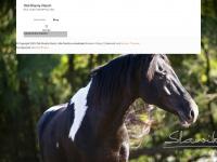 Old-shanty-ranch.de