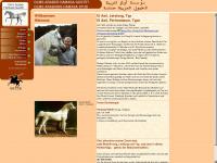 olms-arabians.de