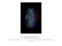 bauer-kalligrafie.de