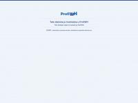 partneragentur.at