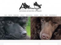 ankes-aristodogs.de