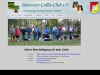 deutscher-collie-club.de