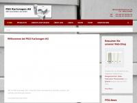 peg-kartonagen.ch