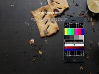 pension-bergfuehrer.ch