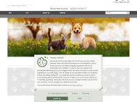 platinum.com