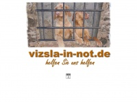 vizsla-in-not.de