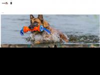 hundeshop-mit-herz.de