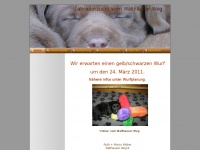 labradorvomwallhaeuserweg.de