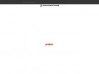 zzf-gmbh.de Webseite Vorschau