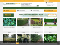 heckenpflanzendirekt.de