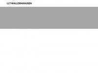 llt-wallernhausen.de Webseite Vorschau