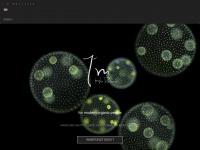 hair-resource.de