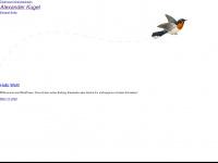 Alexander-kugel.de