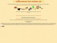 amleto.de Webseite Vorschau