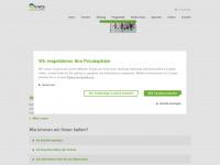 kiwis.de Webseite Vorschau
