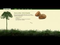 amazonut.de Webseite Vorschau