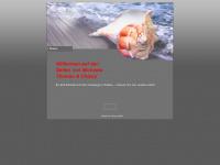 ambrosch-cieslar.de Webseite Vorschau