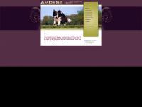 amdesa.de Webseite Vorschau