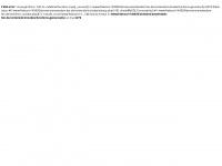 amsterdam-fan.de Webseite Vorschau